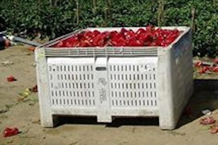 MacroBin - Cajas Agrícolas de Plástico para la Cosecha a California (CA), Kentucky (KY), Washington (WA), México y el Resto del Mundo