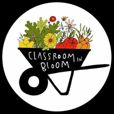 Sustainability & Classroom in Bloom as a Non-Profit Organization